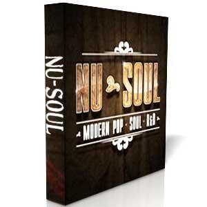 خرید اینترتی کیت ساخت آهنگ Big Fish Audio Nu-Soul