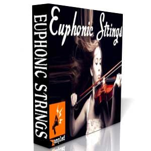 استرینگ بسیار حرفه ای Nucleus SoundLab The Euphonic Strings For REASON